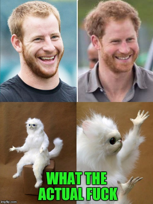 WTF?!?!?!?!?!?1 | WHAT THE ACTUAL F**K | image tagged in prince harry,carson wentz,brothers | made w/ Imgflip meme maker