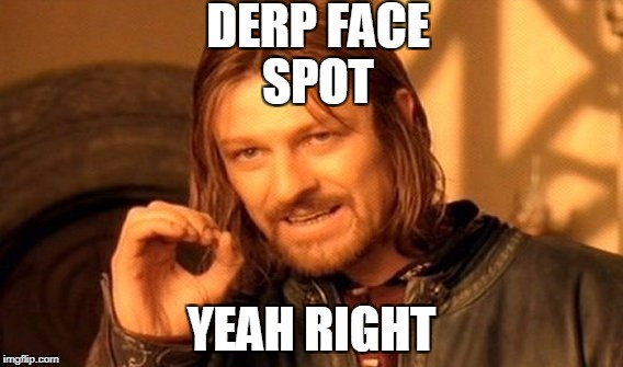 One Does Not Simply Meme | DERP FACE SPOT YEAH RIGHT | image tagged in memes,one does not simply | made w/ Imgflip meme maker
