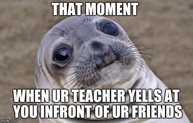 Awkward Moment Sealion Meme | THAT MOMENT WHEN UR TEACHER YELLS AT YOU INFRONT OF UR FRIENDS | image tagged in memes,awkward moment sealion | made w/ Imgflip meme maker