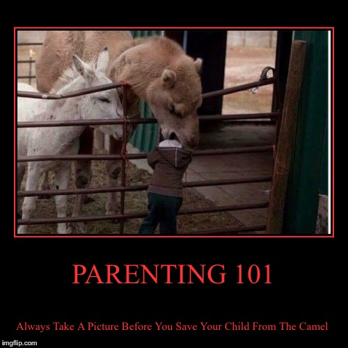 PARENTING 101 | Always Take A Picture Before You Save Your Child From The Camel | image tagged in funny,demotivationals | made w/ Imgflip demotivational maker
