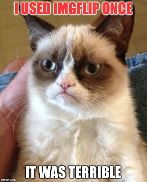 Grumpy Cat Meme | I USED IMGFLIP ONCE IT WAS TERRIBLE | image tagged in memes,grumpy cat | made w/ Imgflip meme maker