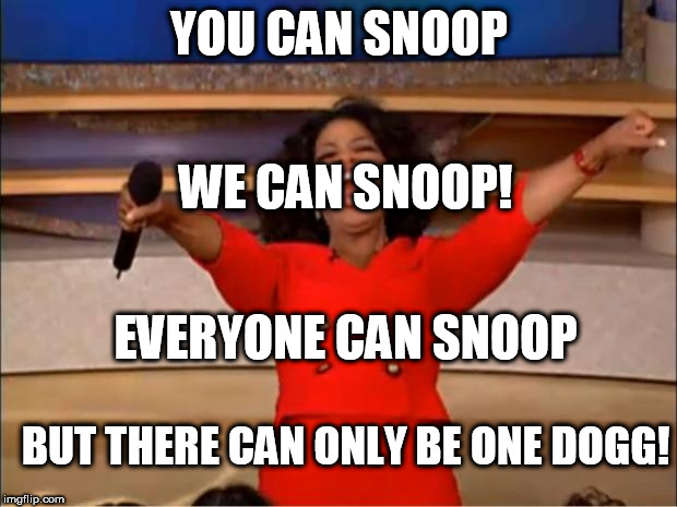 oprah loves  snoop | YOU CAN SNOOP WE CAN SNOOP! EVERYONE CAN SNOOP BUT THERE CAN ONLY BE ONE DOGG! | image tagged in memes,oprah you get a,snoop dogg,oprah  snoopp,the  dogg,oprah can | made w/ Imgflip meme maker