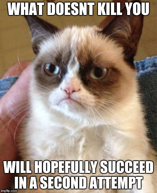 Grumpy Cat Meme | WHAT DOESNT KILL YOU WILL HOPEFULLY SUCCEED IN A SECOND ATTEMPT | image tagged in memes,grumpy cat | made w/ Imgflip meme maker