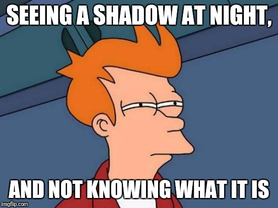 Futurama Fry Meme | SEEING A SHADOW AT NIGHT, AND NOT KNOWING WHAT IT IS | image tagged in memes,futurama fry | made w/ Imgflip meme maker