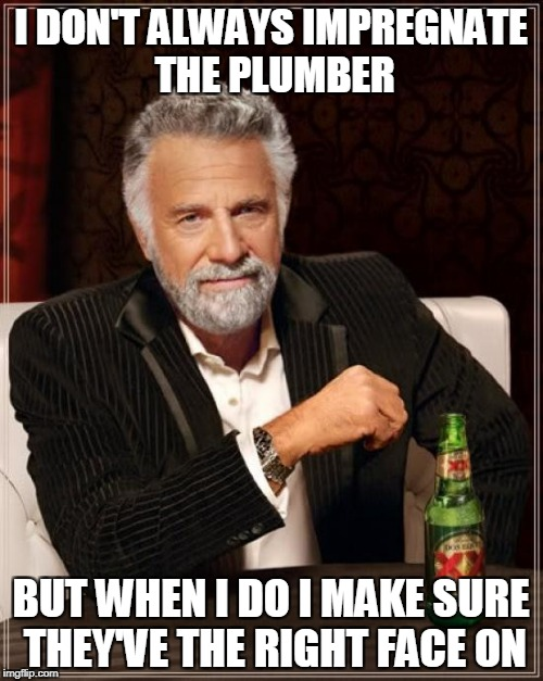 The Most Interesting Man In The World Meme | I DON'T ALWAYS IMPREGNATE THE PLUMBER BUT WHEN I DO I MAKE SURE THEY'VE THE RIGHT FACE ON | image tagged in memes,the most interesting man in the world | made w/ Imgflip meme maker