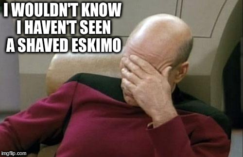 Captain Picard Facepalm Meme | I WOULDN'T KNOW I HAVEN'T SEEN A SHAVED ESKIMO | image tagged in memes,captain picard facepalm | made w/ Imgflip meme maker