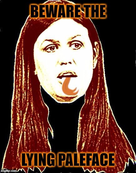 Sarah Huckster:  Professional Liar | BEWARE THE LYING PALEFACE | image tagged in sarah huckabee sanders,trump,dishonest | made w/ Imgflip meme maker