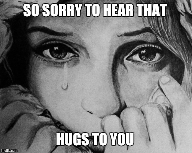 SO SORRY TO HEAR THAT HUGS TO YOU | made w/ Imgflip meme maker