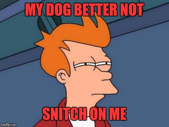 Futurama Fry Meme | MY DOG BETTER NOT SNITCH ON ME | image tagged in memes,futurama fry | made w/ Imgflip meme maker