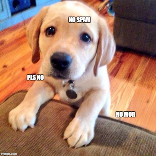 Puppy dog eyes | NO SPAM PLS NO NO MOR | image tagged in puppy dog eyes | made w/ Imgflip meme maker