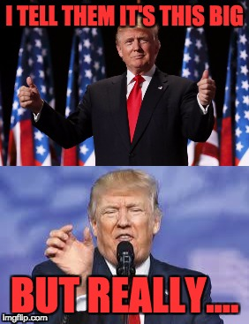 trump | I TELL THEM IT'S THIS BIG BUT REALLY.... | image tagged in trump | made w/ Imgflip meme maker
