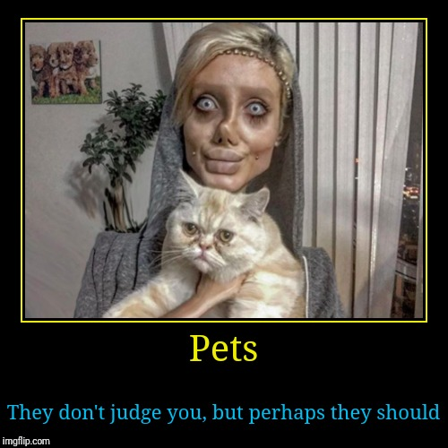 Sahar Tabar's Cat | Pets | They don't judge you, but perhaps they should | image tagged in funny,demotivationals,sahar tabar,crazy cat lady | made w/ Imgflip demotivational maker
