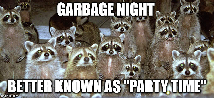 "GARBAGE NIGHT BETTER KNOWN AS ""PARTY TIME"" 