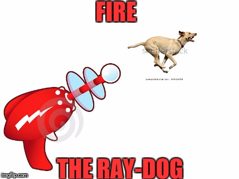 Literal RayDog, because why the heck not. | FIRE THE RAY-DOG | image tagged in raydog,memes | made w/ Imgflip meme maker