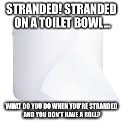 Stranded! | STRANDED! STRANDED ON A TOILET BOWL... WHAT DO YOU DO WHEN YOU'RE STRANDED AND YOU DON'T HAVE A ROLL? | image tagged in funny memes | made w/ Imgflip meme maker