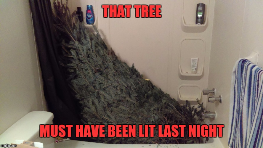 THAT TREE MUST HAVE BEEN LIT LAST NIGHT | image tagged in christmas tree bath | made w/ Imgflip meme maker