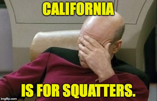 Captain Picard Facepalm Meme | CALIFORNIA IS FOR SQUATTERS. | image tagged in memes,captain picard facepalm | made w/ Imgflip meme maker
