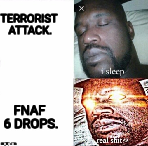 Sleeping Shaq Meme | TERRORIST ATTACK. FNAF 6 DROPS. | image tagged in sleeping shaq | made w/ Imgflip meme maker