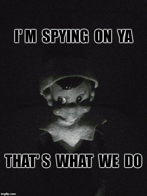 I' M  SPYING  ON  YA THAT' S  WHAT  WE  DO | image tagged in elf on the shelf | made w/ Imgflip meme maker