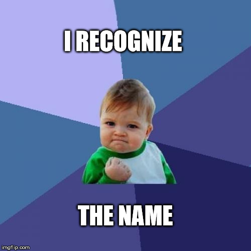 Success Kid Meme | I RECOGNIZE THE NAME | image tagged in memes,success kid | made w/ Imgflip meme maker