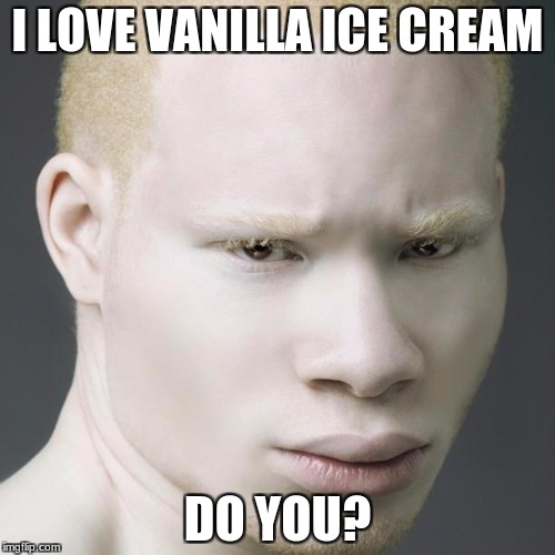 I LOVE VANILLA ICE CREAM DO YOU? | image tagged in ice cream,white | made w/ Imgflip meme maker