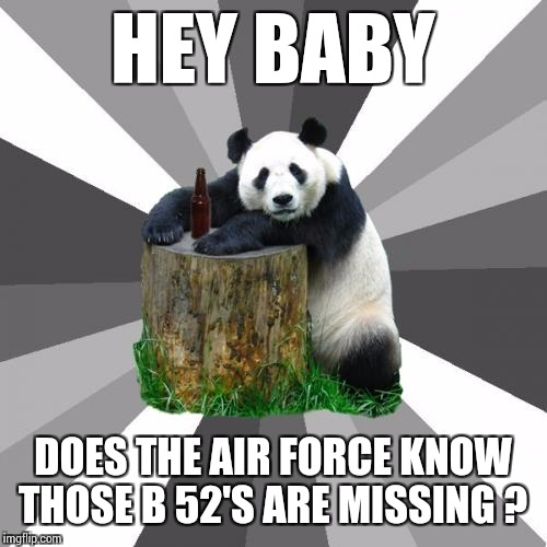Pickup Line Panda Meme | HEY BABY DOES THE AIR FORCE KNOW THOSE B 52'S ARE MISSING ? | image tagged in memes,pickup line panda | made w/ Imgflip meme maker