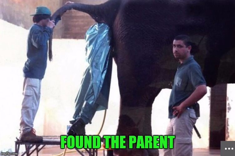 FOUND THE PARENT | made w/ Imgflip meme maker