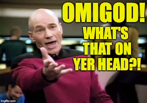 Picard Wtf Meme | OMIGOD! WHAT'S THAT ON YER HEAD?! | image tagged in memes,picard wtf | made w/ Imgflip meme maker