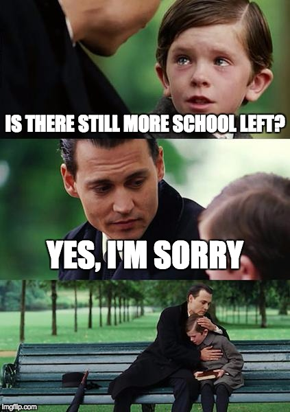 Finding Neverland Meme | IS THERE STILL MORE SCHOOL LEFT? YES, I'M SORRY | image tagged in memes,finding neverland | made w/ Imgflip meme maker