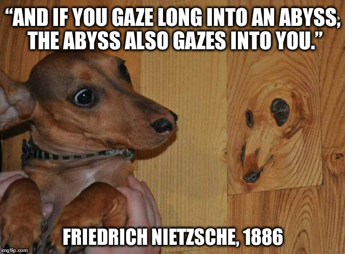 "And if you gaze long into an abyss, the abyss also gazes into you | ""AND IF YOU GAZE LONG INTO AN ABYSS, THE ABYSS ALSO GAZES INTO YOU."" FRIEDRICH NIETZSCHE, 1886 