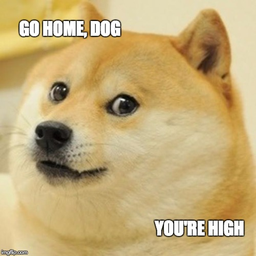 Doge Meme | GO HOME, DOG YOU'RE HIGH | image tagged in memes,doge | made w/ Imgflip meme maker