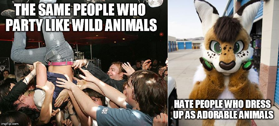 Furry Irony | THE SAME PEOPLE WHO PARTY LIKE WILD ANIMALS HATE PEOPLE WHO DRESS UP AS ADORABLE ANIMALS | image tagged in party animals,furry,furries,college,party,irony | made w/ Imgflip meme maker