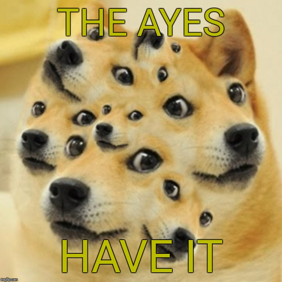THE AYES HAVE IT | made w/ Imgflip meme maker