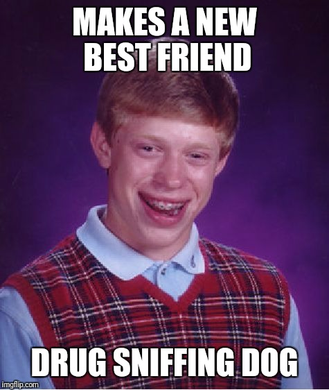 Bad Luck Brian Meme | MAKES A NEW BEST FRIEND DRUG SNIFFING DOG | image tagged in memes,bad luck brian | made w/ Imgflip meme maker