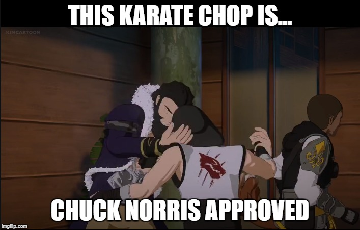 RWBY Volume 5 Episode 8 chop | THIS KARATE CHOP IS... CHUCK NORRIS APPROVED | image tagged in rwby,memes | made w/ Imgflip meme maker