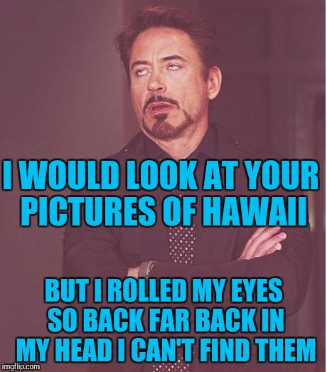 Face You Make Robert Downey Jr Meme | I WOULD LOOK AT YOUR PICTURES OF HAWAII BUT I ROLLED MY EYES SO BACK FAR BACK IN MY HEAD I CAN'T FIND THEM | image tagged in memes,face you make robert downey jr | made w/ Imgflip meme maker