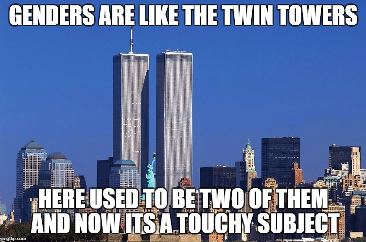 oof | GENDERS ARE LIKE THE TWIN TOWERS HERE USED TO BE TWO OF THEM AND NOW ITS A TOUCHY SUBJECT | image tagged in offensive | made w/ Imgflip meme maker