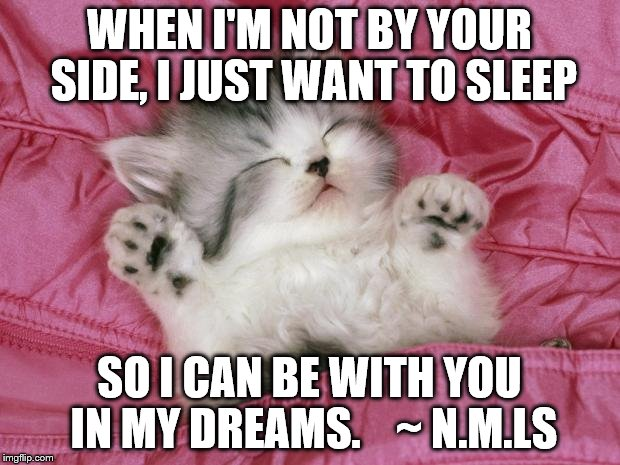 kitten sleeping | WHEN I'M NOT BY YOUR SIDE, I JUST WANT TO SLEEP SO I CAN BE WITH YOU IN MY DREAMS.    ~ N.M.LS | image tagged in kitten sleeping | made w/ Imgflip meme maker