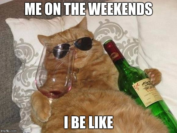 Funny Cat Birthday | ME ON THE WEEKENDS I BE LIKE | image tagged in funny cat birthday | made w/ Imgflip meme maker