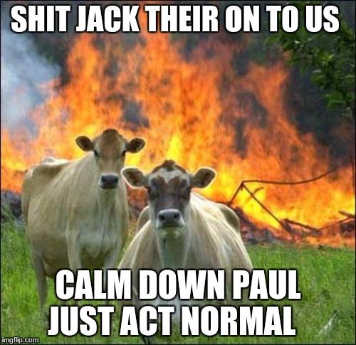 Evil Cows Meme | SHIT JACK THEIR ON TO US CALM DOWN PAUL JUST ACT NORMAL | image tagged in memes,evil cows | made w/ Imgflip meme maker