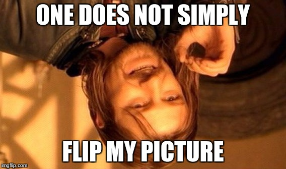 One Does Not Simply Meme | ONE DOES NOT SIMPLY FLIP MY PICTURE | image tagged in memes,one does not simply | made w/ Imgflip meme maker