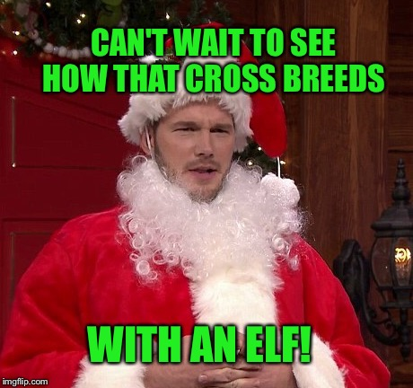 CAN'T WAIT TO SEE HOW THAT CROSS BREEDS WITH AN ELF! | made w/ Imgflip meme maker