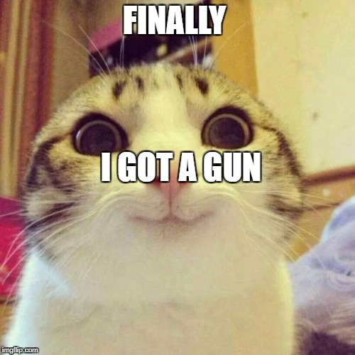 Smiling Cat Meme | FINALLY I GOT A GUN | image tagged in memes,smiling cat | made w/ Imgflip meme maker
