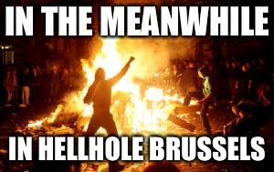 IN THE MEANWHILE IN HELLHOLE BRUSSELS | image tagged in anarchy riot | made w/ Imgflip meme maker