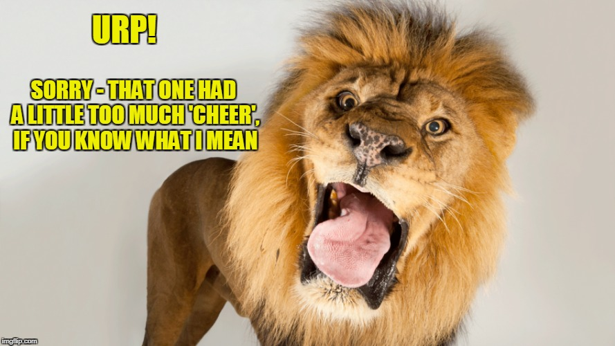 URP! SORRY - THAT ONE HAD A LITTLE TOO MUCH 'CHEER', IF YOU KNOW WHAT I MEAN | made w/ Imgflip meme maker