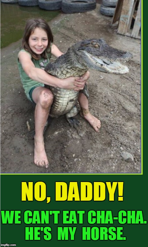 Why I Love Louisiana! | NO, DADDY! WE CAN'T EAT CHA-CHA. HE'S  MY HORSE. | image tagged in girl riding alligator,vince vance,little girl playing with alligator,gator,alligators,louisiana swamp | made w/ Imgflip meme maker