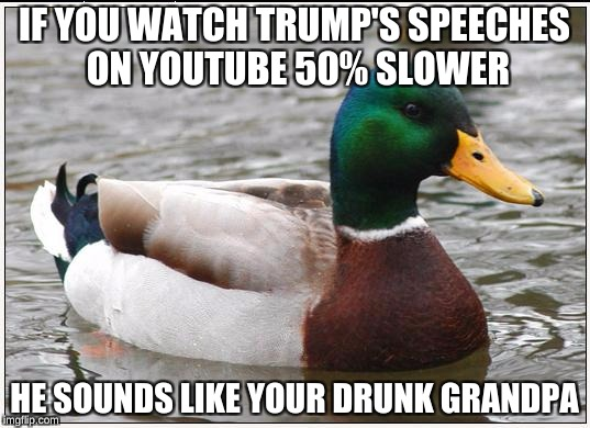 Watch Trump talk at 0.5 speed, it's hilarious  | IF YOU WATCH TRUMP'S SPEECHES ON YOUTUBE 50% SLOWER HE SOUNDS LIKE YOUR DRUNK GRANDPA | image tagged in memes,actual advice mallard | made w/ Imgflip meme maker