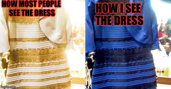 This is just off of the people at my school. | HOW MOST PEOPLE SEE THE DRESS HOW I SEE THE DRESS | image tagged in meme,memes,funny memes,funny meme,funny because it's true | made w/ Imgflip meme maker