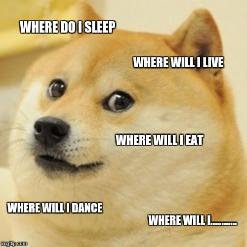 Doge Meme | WHERE DO I SLEEP WHERE WILL I LIVE WHERE WILL I EAT WHERE WILL I DANCE WHERE WILL I............ | image tagged in memes,doge | made w/ Imgflip meme maker