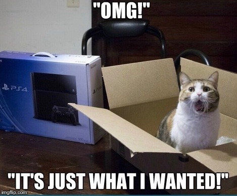 "Merry RayCat Christmas | ""OMG"" ""IT'S JUST WHAT I WANTED!"" 
